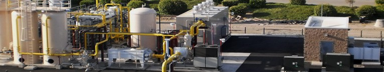 biogas energy systems