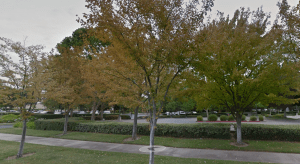 The new greener SCS Engineers office in Pleasanton is located in a complex with many trees and green spaces.